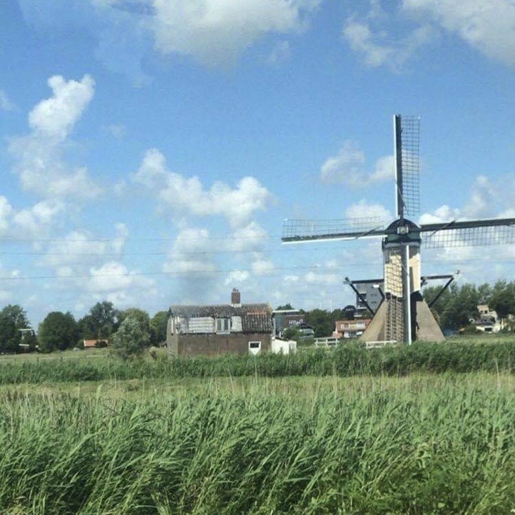 Somewhere in the Zuid Holland