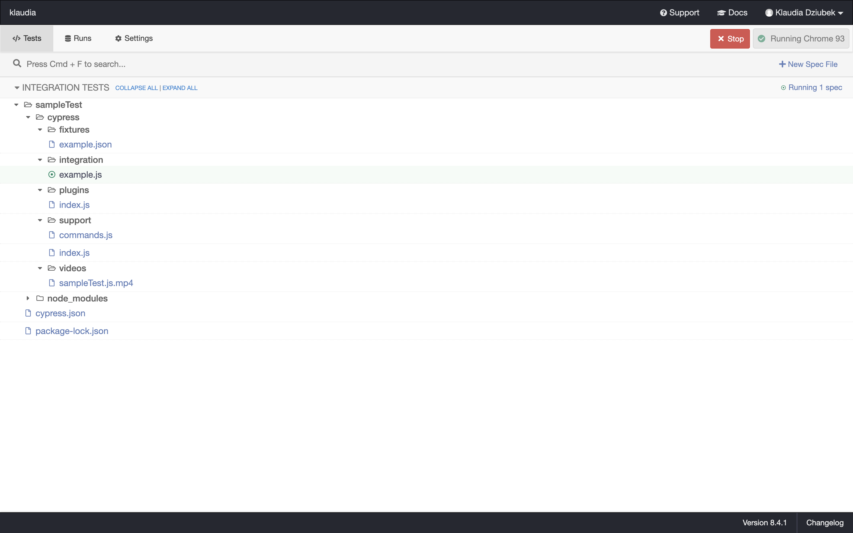 We clicked Run 1 integration spec and we can see the following output.